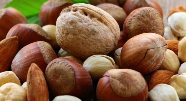 natura Pytanie-Ciekawostka: Które orzechy jedzone przez ludzi są najtłustszymi?