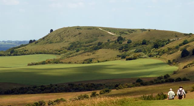 Geography Trivia Question: The Chiltern Hills in England are made from what type of rock?