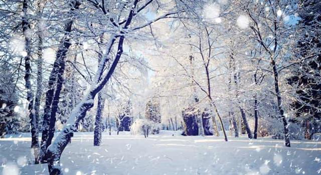 Natur Wissensfrage: Welche Farbe hatte der Schnee, der einmal 2007 in Sibirien gefallen ist?