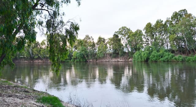 Geography Trivia Question: Where is the city of Wagga Wagga located?