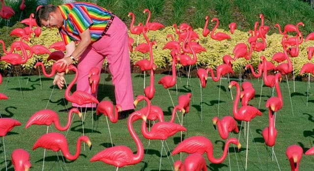 Society Trivia Question: Who invented the plastic pink flamingo lawn ornament?