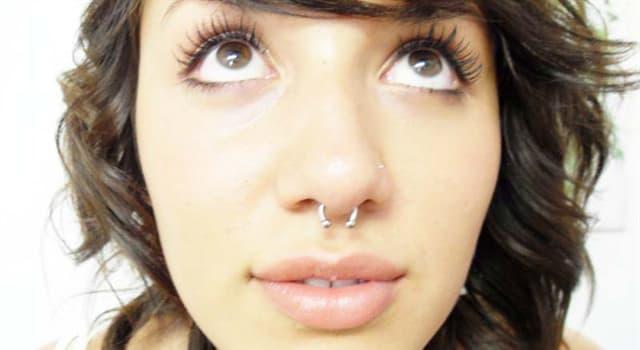 Wissenschaft Wissensfrage: Wie heißt die mittelständige Trennwand der Nase?