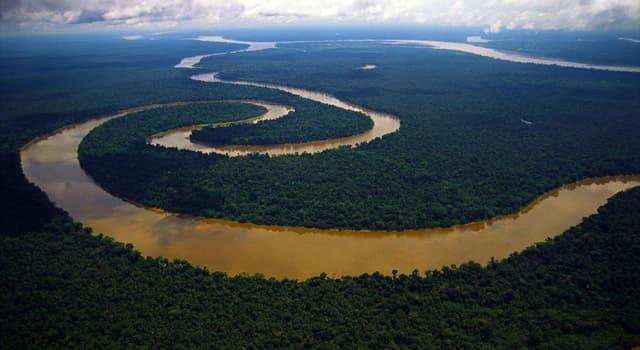 Geographie Wissensfrage: Wie viele Brücken führen über den Amazonas?