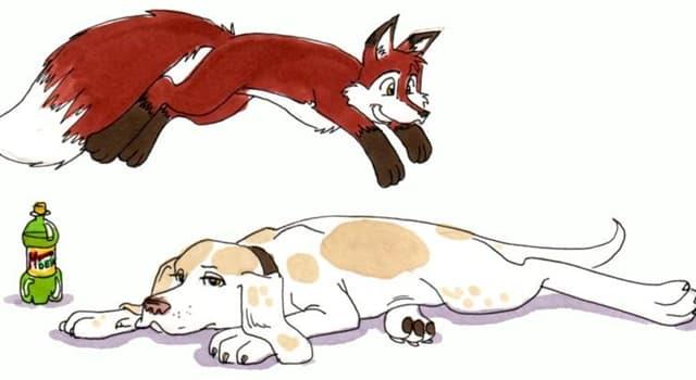 """Kultura Pytanie-Ciekawostka: Wyrażenie """"the quick brown fox jumps over the lazy dog"""" to przykład czego?"""