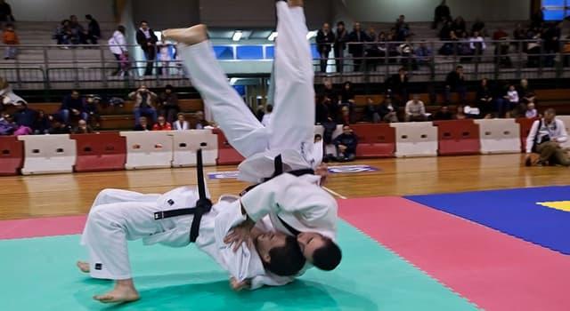 Sport Wissensfrage: Aus welcher Kampfsportart wurde Judo entwickelt?