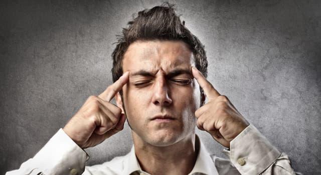 Наука Запитання-цікавинка: Що називають вищою формою психічного відображення, властивою суспільно розвиненій людині?