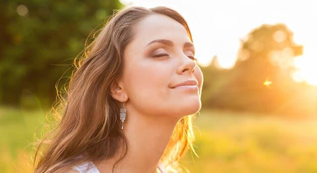 Наука Запитання-цікавинка: Що з'являється на шкірі при актівіціі сонцем меланоцитів?