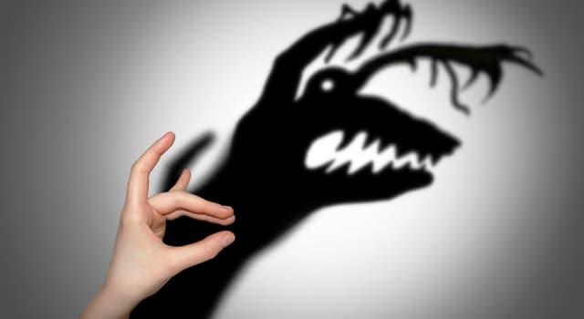 natura Pytanie-Ciekawostka: Co oznacza allodoksafobia?