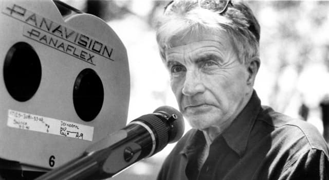 Movies & TV Trivia Question: Director Blake Edwards is most associated with which series of comedy films?