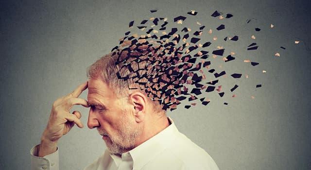 Наука Запитання-цікавинка: Як називається порушення і розлад пам'яті, що виражається в помилкових спогадах?