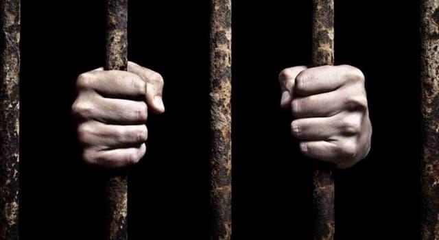Filmy Pytanie-Ciekawostka: Który z tych filmów zaczyna się od tego, że główny bohater wychodzi z więzienia?