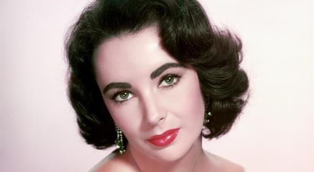 Filmy Pytanie-Ciekawostka: W której z tych adaptacji filmowych książek Tennessee Williamsa nie pojawia się Elizabeth Taylor?