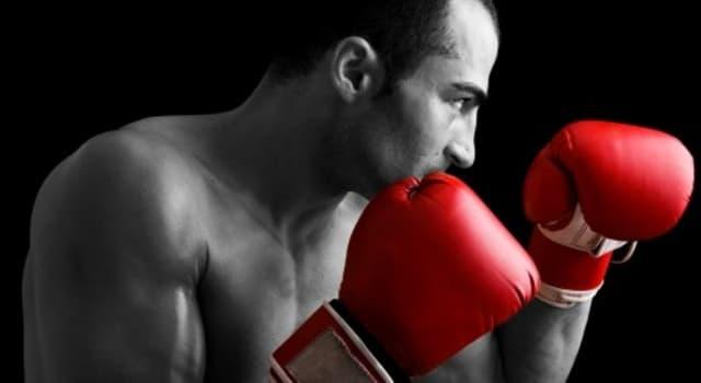 Sport Wissensfrage: Wer gilt als der Boxer mit den meisten offiziellen Knockout-Siegen?
