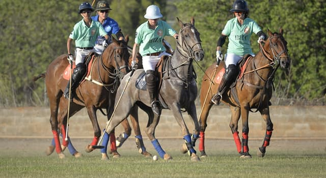 Sport Trivia Question: What has polo been called?
