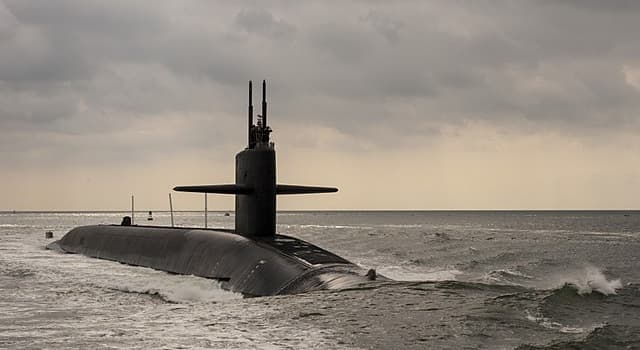 Science Trivia Question: Which country developed the 'Sonar 2087' towed array for use in anti-submarine warfare?