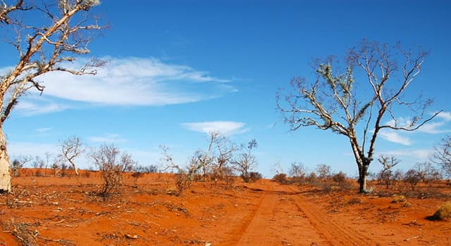 Geography Trivia Question: Which is Australia's largest desert?