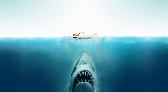 """Movies & TV Trivia Question: Who did Steven Spielberg name the shark after in the film """"Jaws""""?"""
