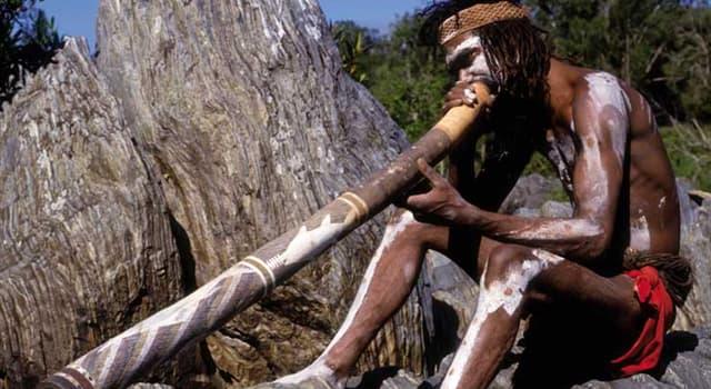 Kultur Wissensfrage: Aus welchem Holz wird ein traditionelles australisches Musikinstrument Didgeridoo gefertigt?