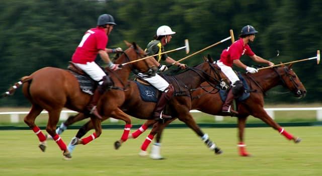 Sport Wissensfrage: Aus welchem Land stammt ursprünglich das Spiel Polo?