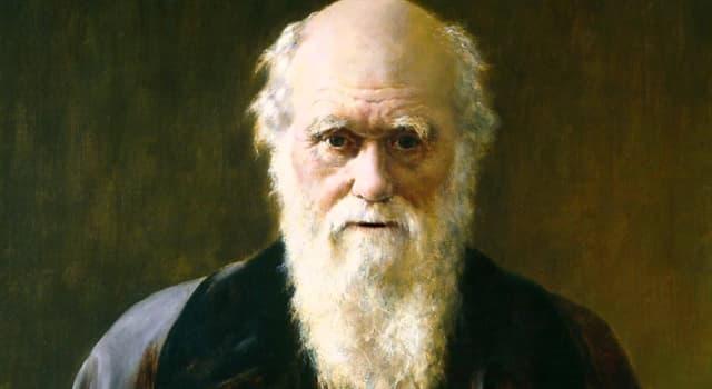 Natur Wissensfrage: Charles Darwin studierte acht Jahre lang, um eine vierbändige Arbeit über welche Tiere zu schreiben?