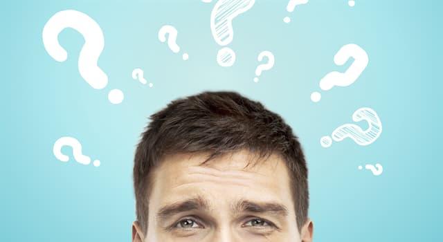 nauka Pytanie-Ciekawostka: Co to przesłyszenie?