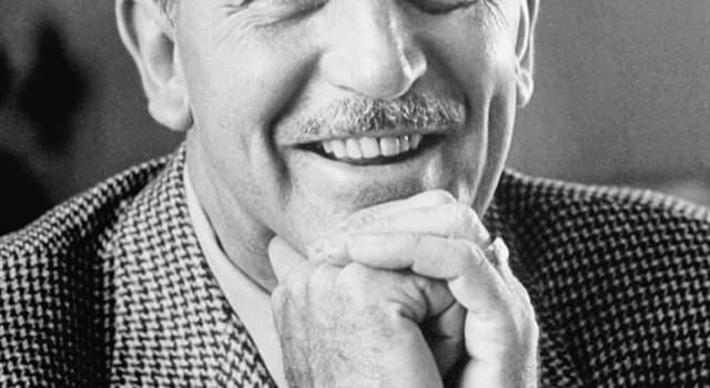 społeczeństwo Pytanie-Ciekawostka: Co wynalazł Walt Disney?