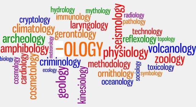 nauka Pytanie-Ciekawostka: Czym zajmuje się epistemologia?