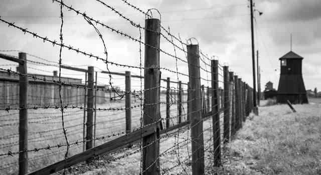 historia Pytanie-Ciekawostka: Gdzie znajdował się obóz koncentracyjny Arbeitsdorf?