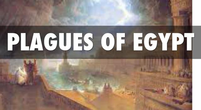 historia Pytanie-Ciekawostka: Ile było plag egipskich w Biblii?