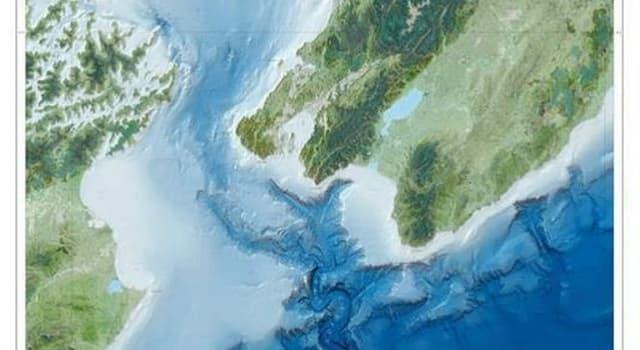 Geografia Pytanie-Ciekawostka: Jak nazywa się cieśnina znajdująca się pomiędzy Wyspą Północną i Południową Nowej Zelandii?