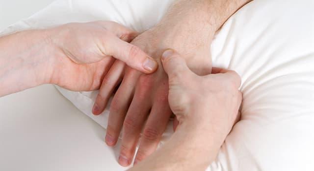nauka Pytanie-Ciekawostka: Jak nazywa się metoda diagnostyki medycznej, która polega na macaniu palcami?