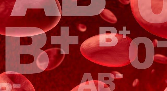 natura Pytanie-Ciekawostka: Jaka grupa krwi jest najrzadszą?