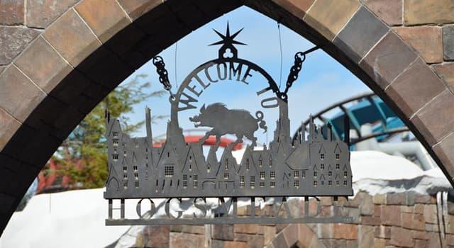 Filmy Pytanie-Ciekawostka: Jaki rodzaj trunku był sprzedawany w Hogsmeade w filmach/książkach o Harrym Potterze?