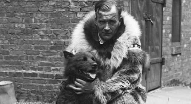 Історія Запитання-цікавинка: Як звали їздову собаку, яка перевозила медикаменти під час епідемії дифтерії в 1925 році на Алясці?