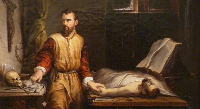 Наука Запитання-цікавинка: Коли французький лікар Амбруаза Паре став одним з батьків хірургії?