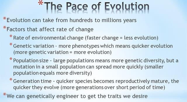 nauka Pytanie-Ciekawostka: Która z tych jednostek służy do mierzenia tempa ewolucji?