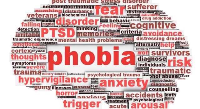 społeczeństwo Pytanie-Ciekawostka: Lachanofobia to objawia przed... ?