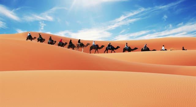 Geografia Pytanie-Ciekawostka: Miasto Timbuktu znajduje się na skraju której pustyni?