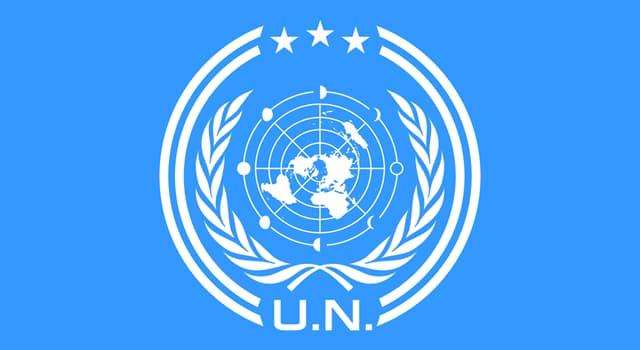 społeczeństwo Pytanie-Ciekawostka: Nazwij 4 z 6 oficjalnych języków Narodów Zjednoczonych?
