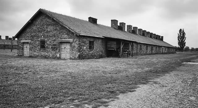 historia Pytanie-Ciekawostka: Obóz Auschwitz zbudowany przez nazistowskie Niemcy był kompleksem ilu głównych obozów?