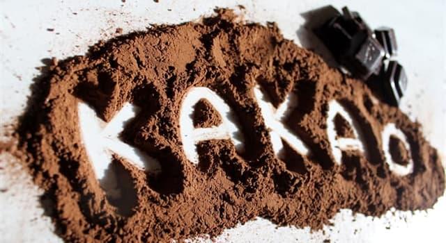 Kultura Pytanie-Ciekawostka: Skąd pochodzi 70% ziaren kakaowca na świecie?