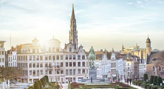 Географія Запитання-цікавинка: Столицею якої держави є Брюссель?