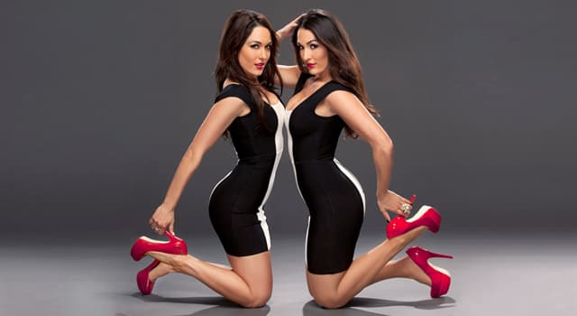 Sport Trivia Question: The Bella Twins are famous professionals in which sport?