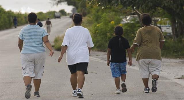społeczeństwo Pytanie-Ciekawostka: W którym kraju ponad 95% populacji ma nadwagę?
