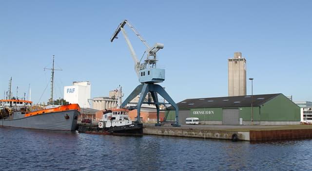 Geografia Pytanie-Ciekawostka: W którym kraju znajduje się port Odense?