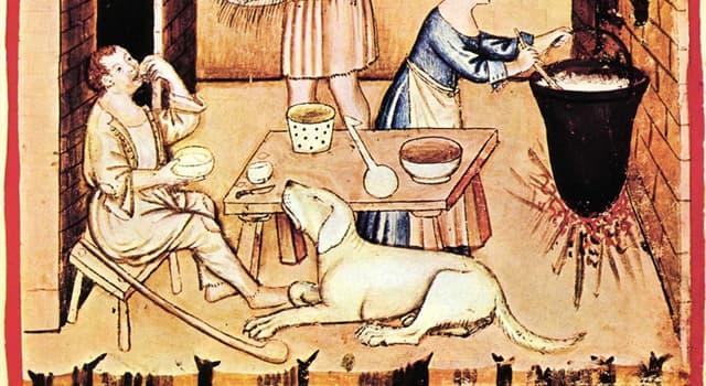 historia Pytanie-Ciekawostka: W którym wieku pojawiły się pierwsze książki kucharskie?