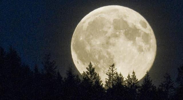 Wissenschaft Wissensfrage: Warum sieht der Vollmond beim Aufgehen so groß und um Mitternacht so klein aus?