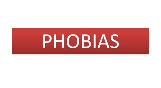 Gesellschaft Wissensfrage: Was ist Menophobie?