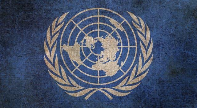 Gesellschaft Wissensfrage: Welche dieser Organisationen gehört zu den Vereinten Nationen?