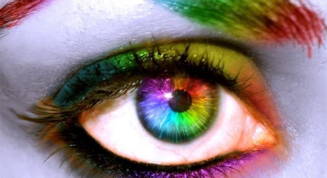 Gesellschaft Wissensfrage: Welche Farbe wirkt beruhigend?